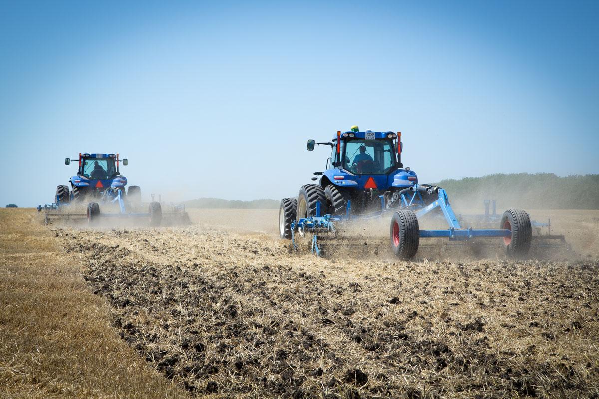 Выращивание зерновых технических и прочих сельскохозяйственных 511